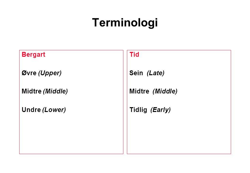 Terminologi Bergart Øvre (Upper) Midtre (Middle) Undre (Lower) Tid