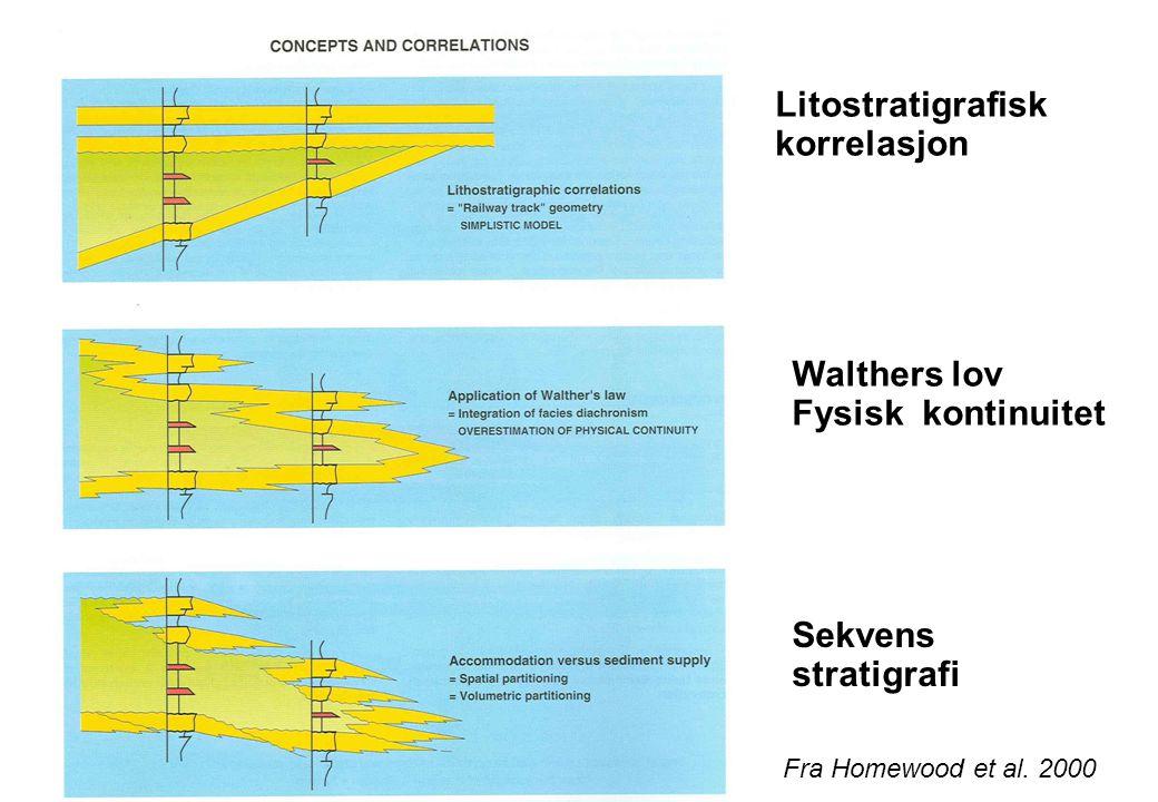 Litostratigrafisk korrelasjon