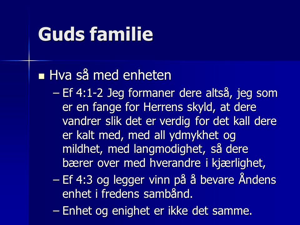 Guds familie Hva så med enheten