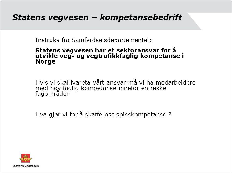 Statens vegvesen – kompetansebedrift