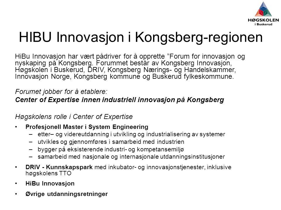 HIBU Innovasjon i Kongsberg-regionen