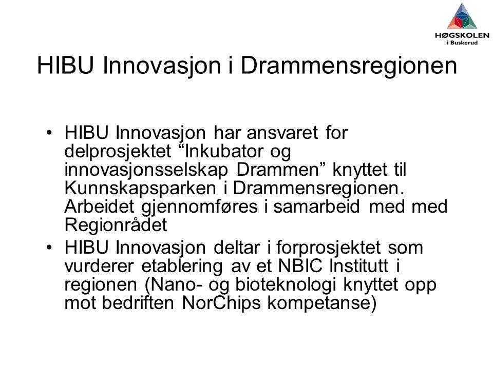 HIBU Innovasjon i Drammensregionen