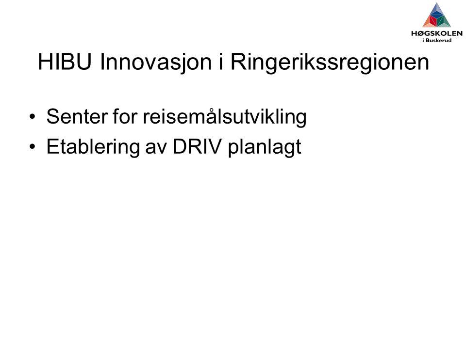 HIBU Innovasjon i Ringerikssregionen