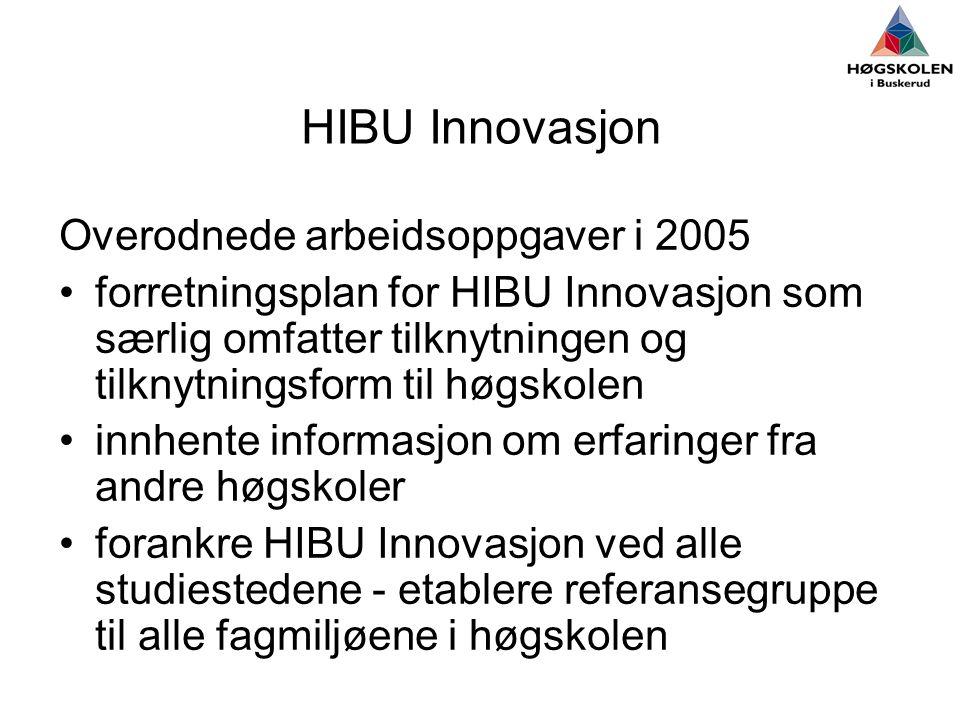 HIBU Innovasjon Overodnede arbeidsoppgaver i 2005