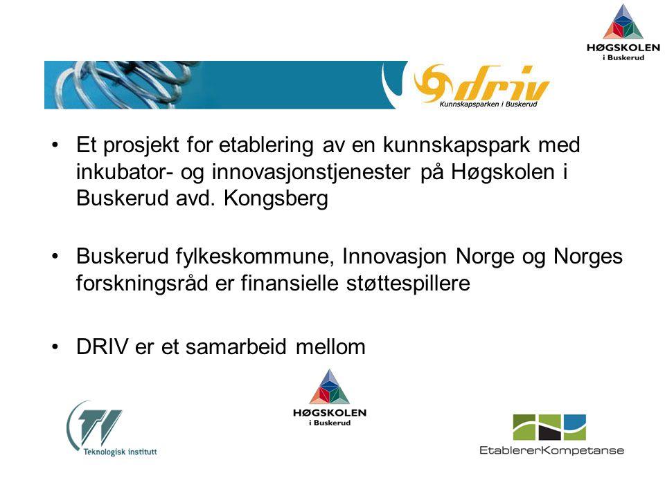 Et prosjekt for etablering av en kunnskapspark med inkubator- og innovasjonstjenester på Høgskolen i Buskerud avd. Kongsberg