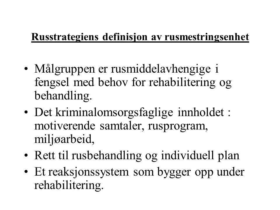 Russtrategiens definisjon av rusmestringsenhet