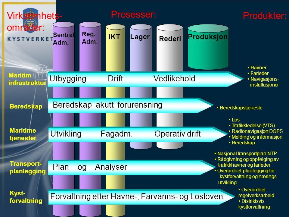 Virksomhets- områder: Prosesser: Produkter: