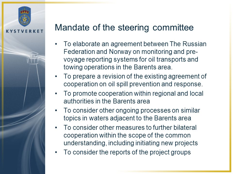Mandate of the steering committee