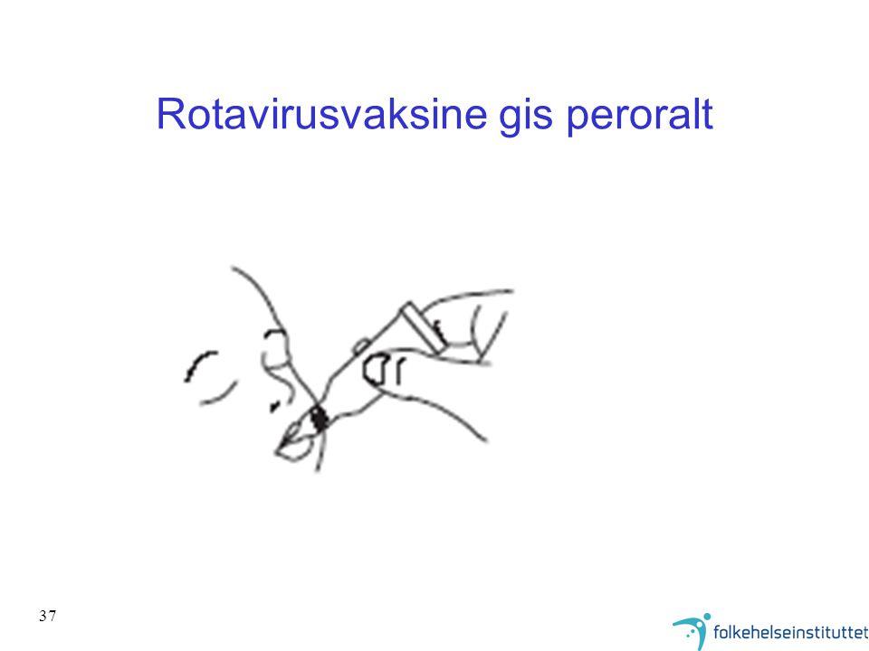 Rotavirusvaksine gis peroralt