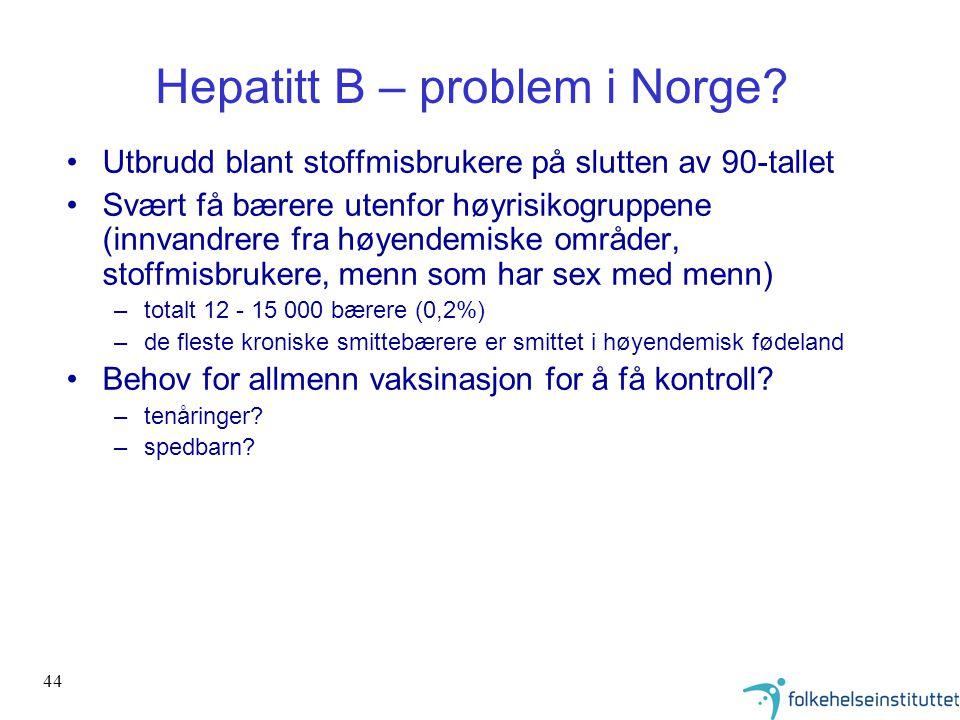 Hepatitt B – problem i Norge