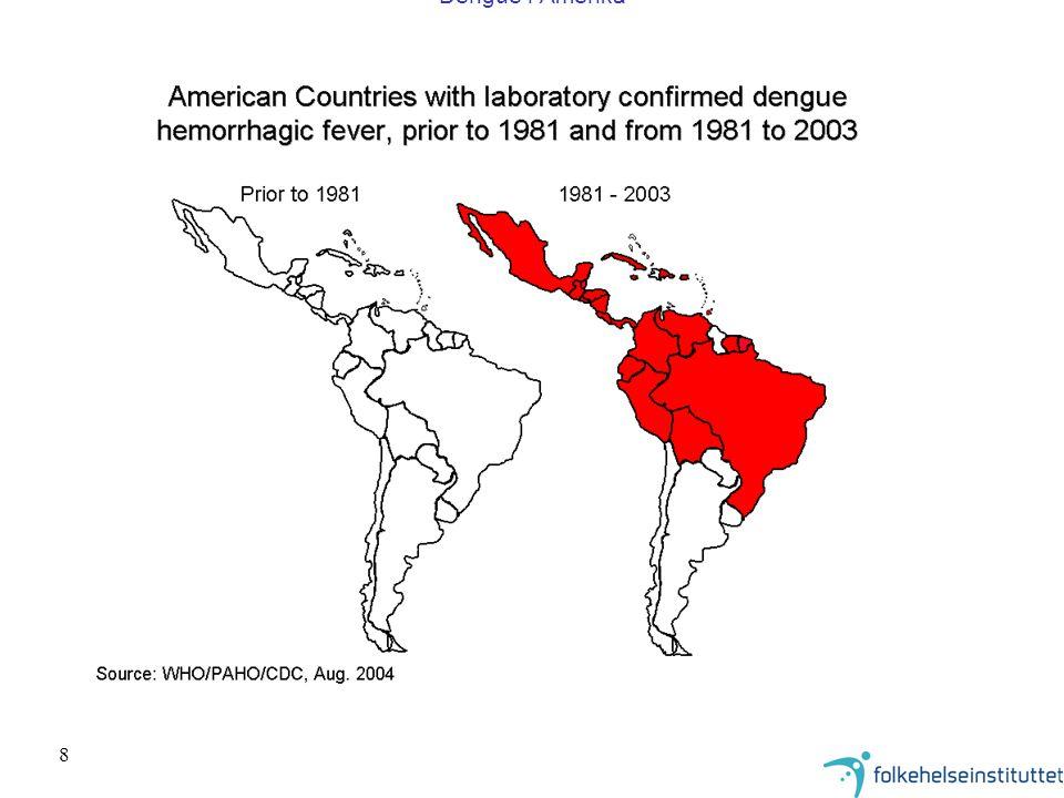 Dengue i Amerika