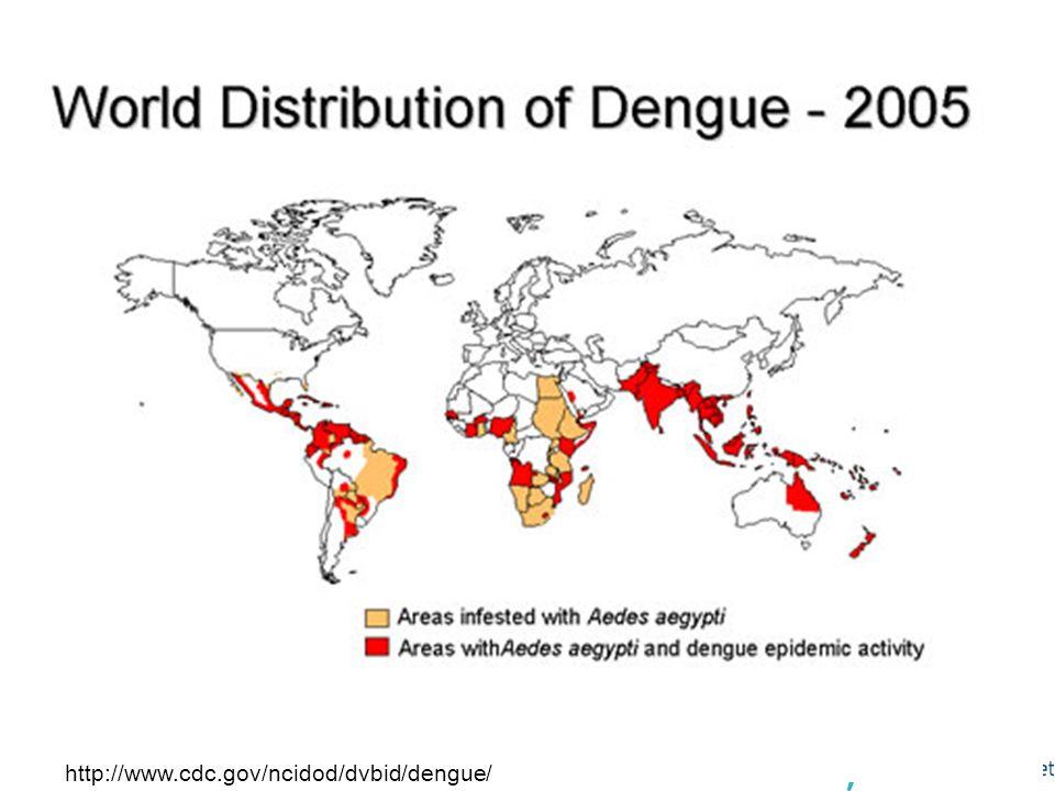 Dengue og aedes aegypti 2005 - verden