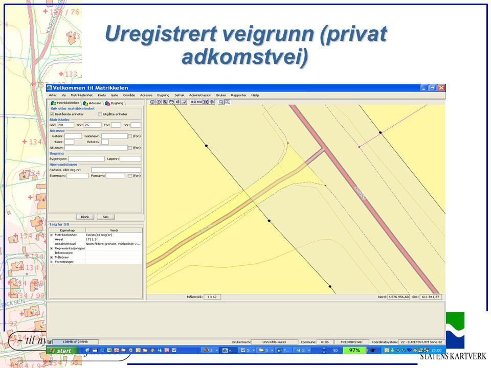 Uregistrert veigrunn (privat adkomstvei)
