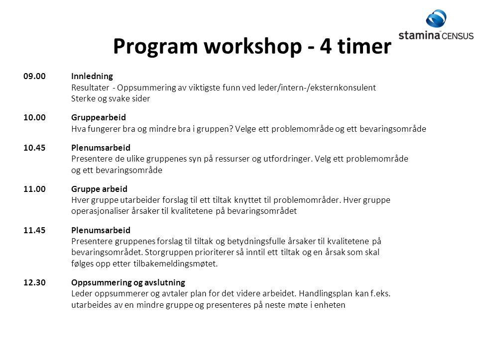 Program workshop - 4 timer