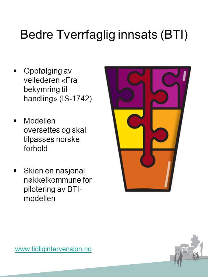 Bedre Tverrfaglig innsats (BTI)