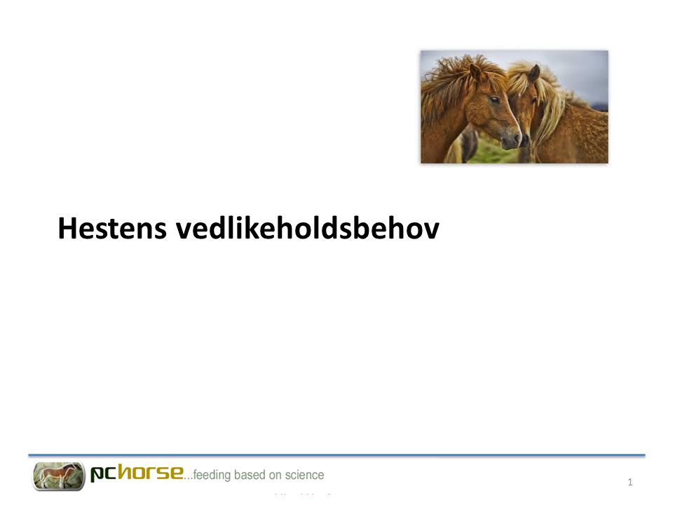 Hestens vedlikeholdsbehov