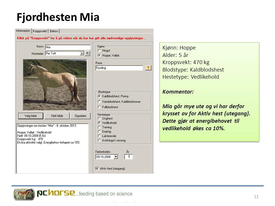 Fjordhesten Mia Kjønn: Hoppe Alder: 5 år Kroppsvekt: 470 kg