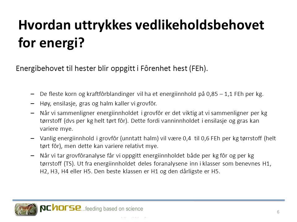 Hvordan uttrykkes vedlikeholdsbehovet for energi