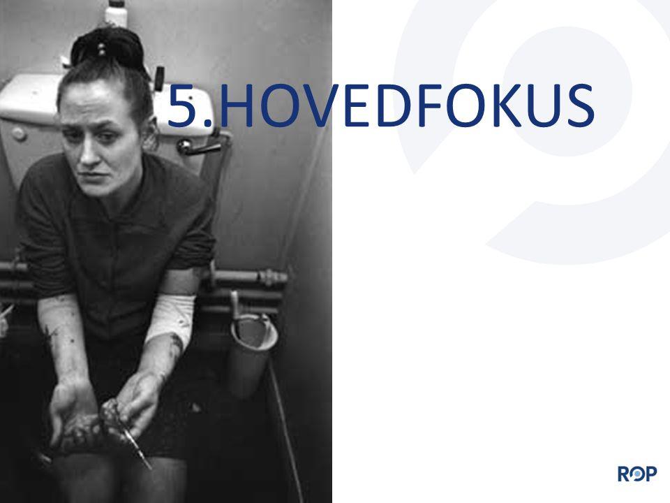 5.HOVEDFOKUS
