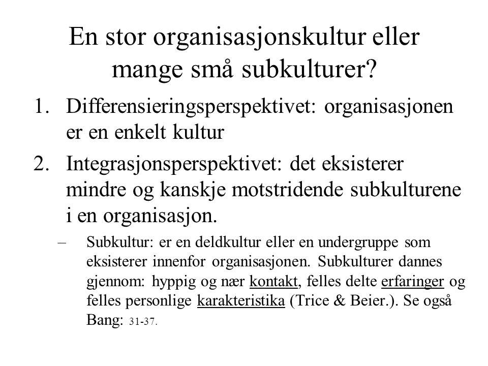 En stor organisasjonskultur eller mange små subkulturer