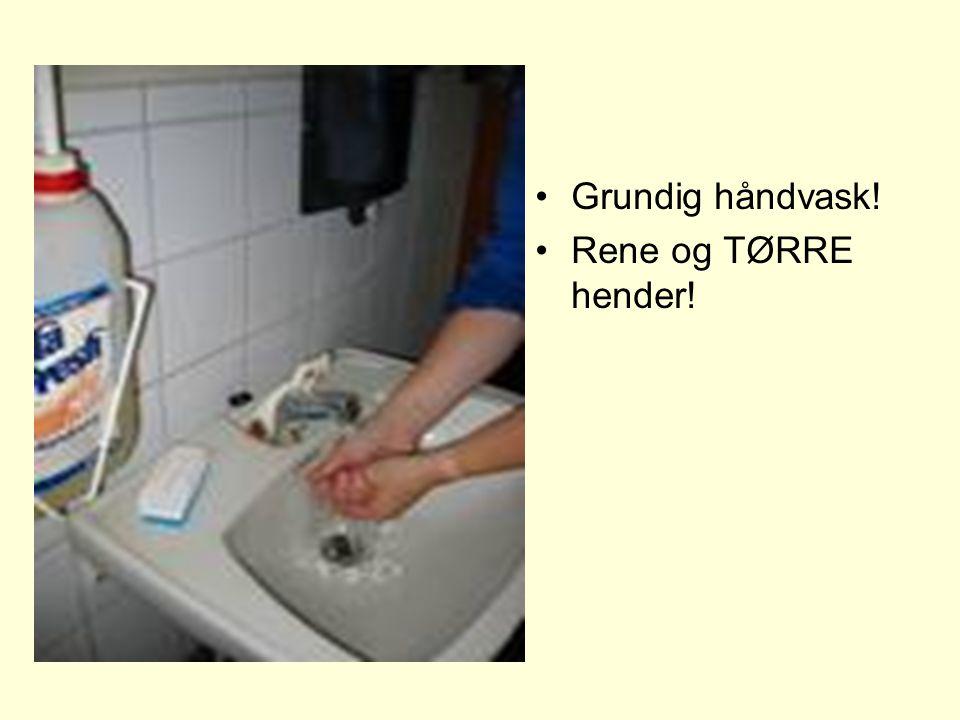 Grundig håndvask! Rene og TØRRE hender!