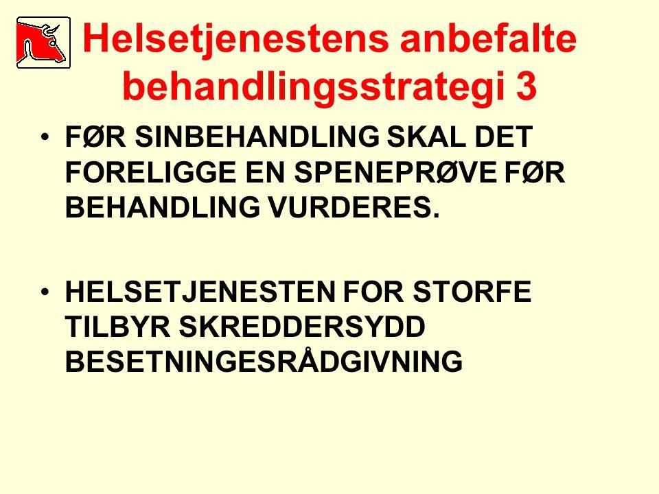 Helsetjenestens anbefalte behandlingsstrategi 3