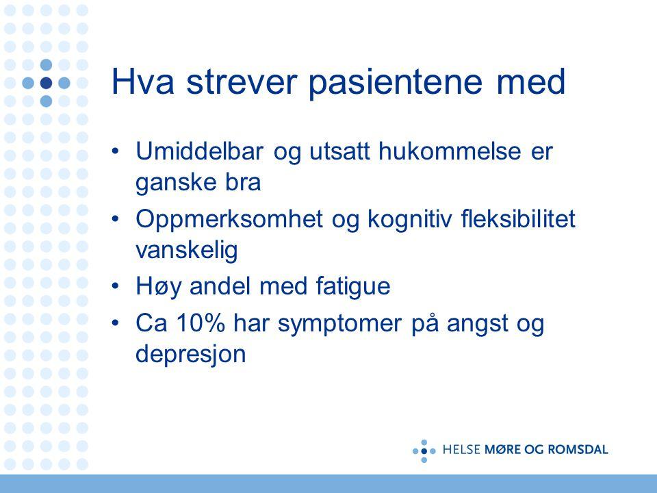 Hva strever pasientene med