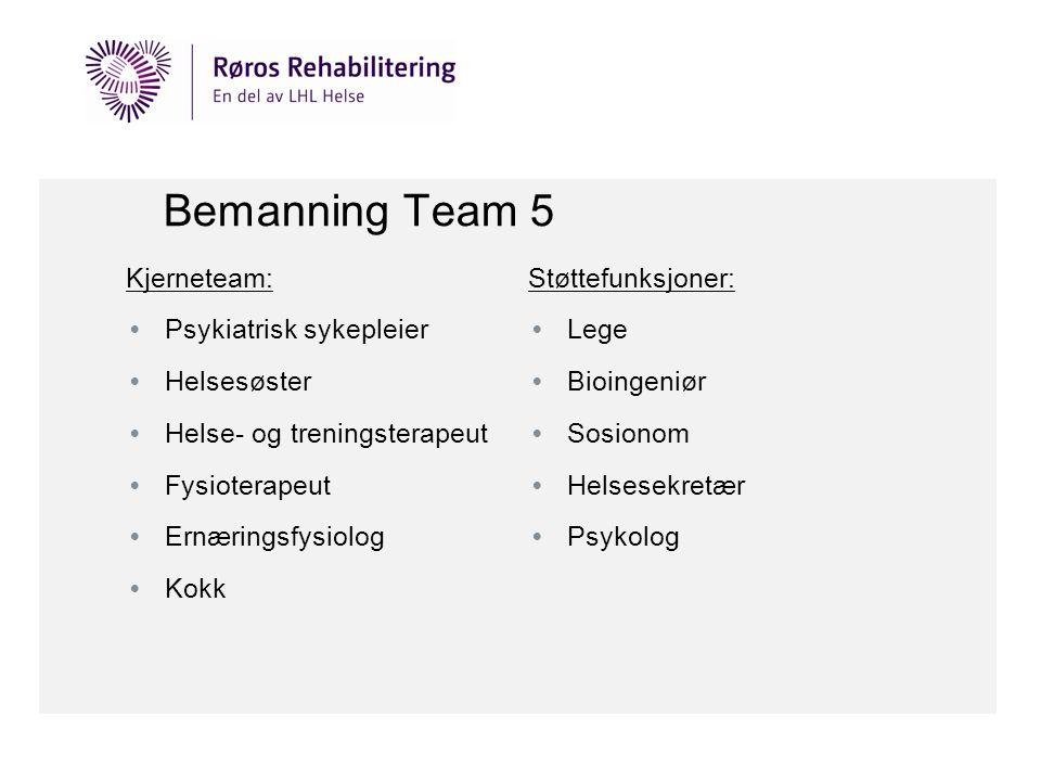 Bemanning Team 5 Kjerneteam: Psykiatrisk sykepleier Helsesøster