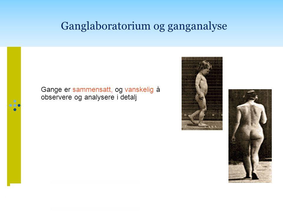 Ganglaboratorium og ganganalyse