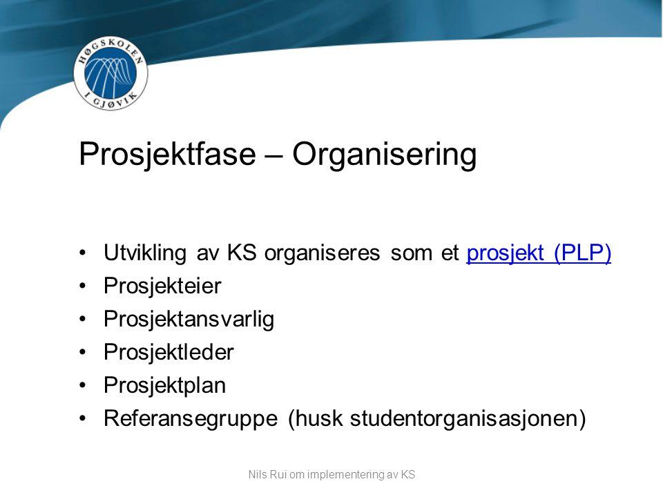 Prosjektfase – Organisering