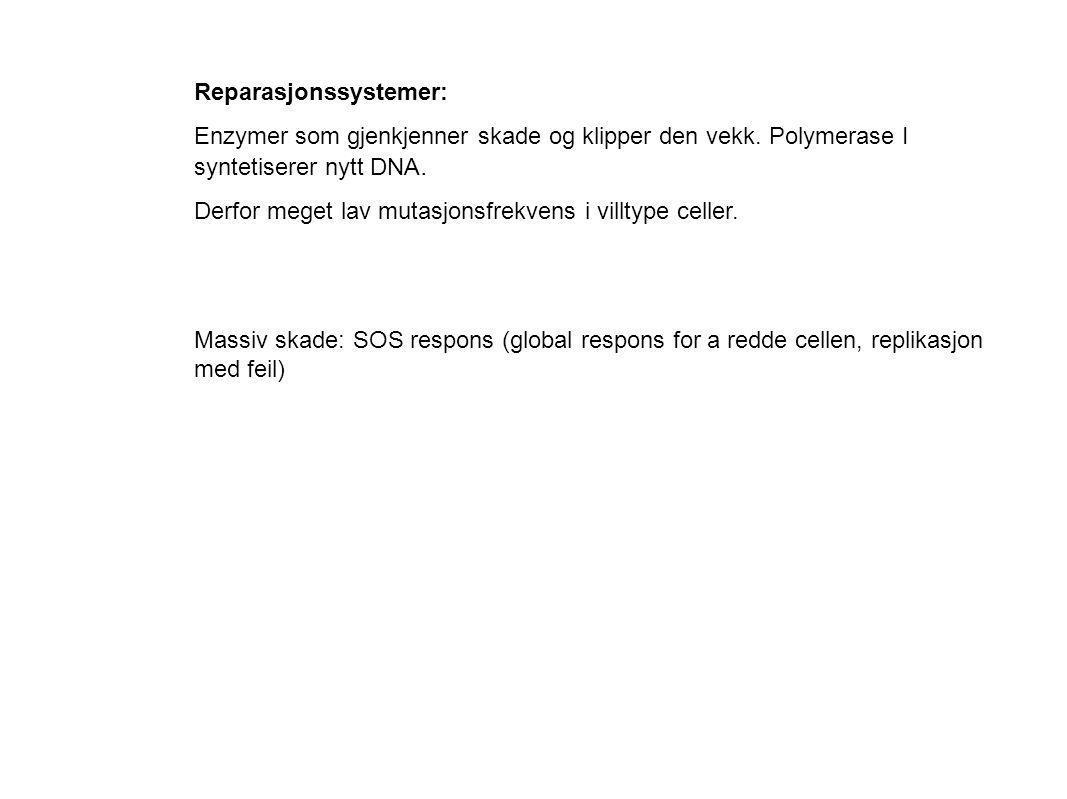 Reparasjonssystemer: