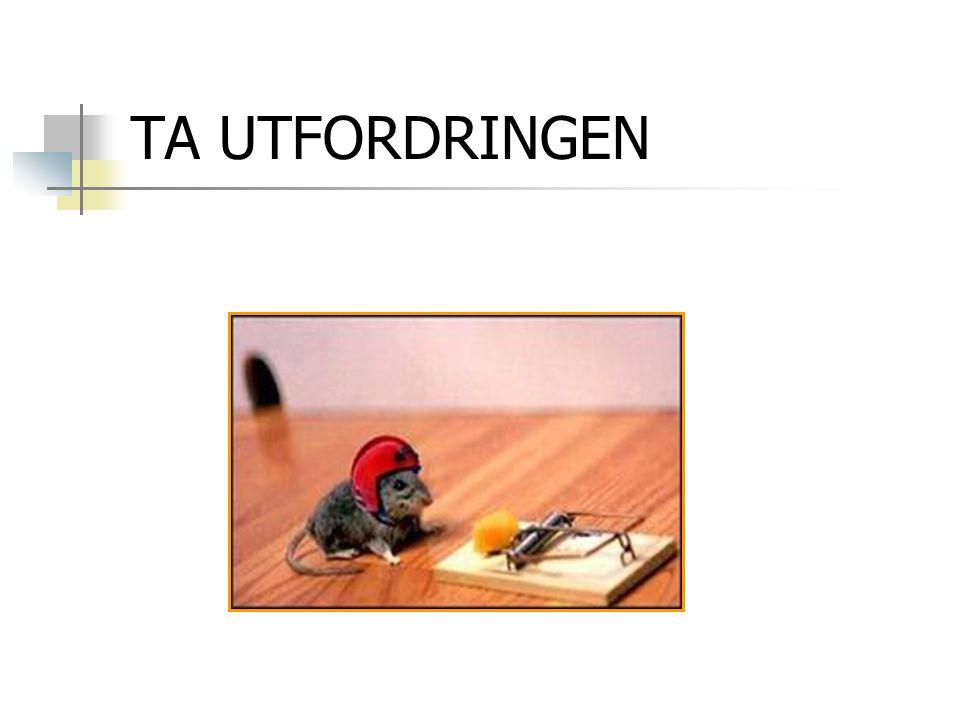 TA UTFORDRINGEN