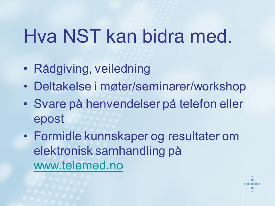 Hva NST kan bidra med. Rådgiving, veiledning