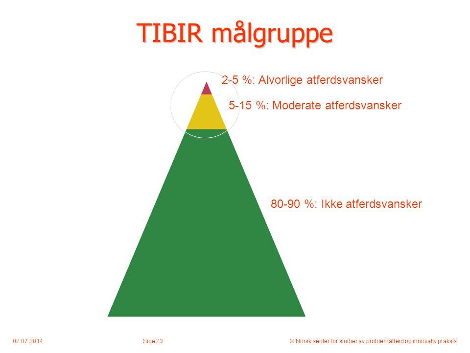 TIBIR målgruppe 2-5 %: Alvorlige atferdsvansker