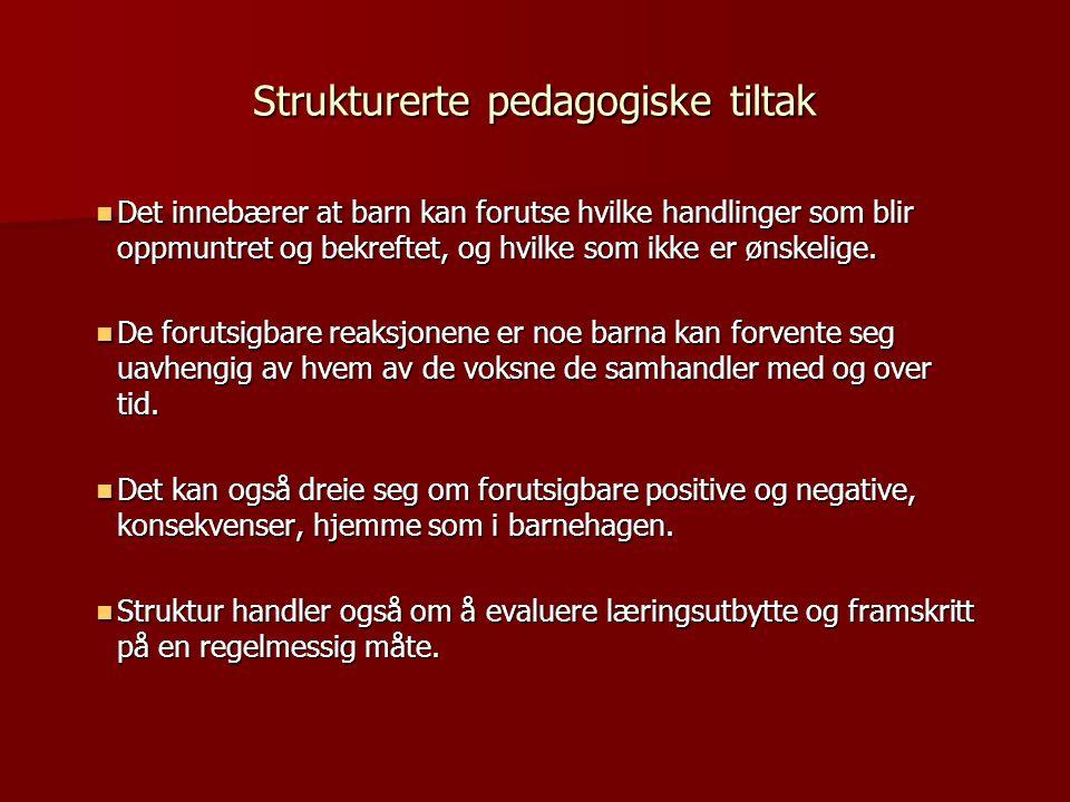Strukturerte pedagogiske tiltak