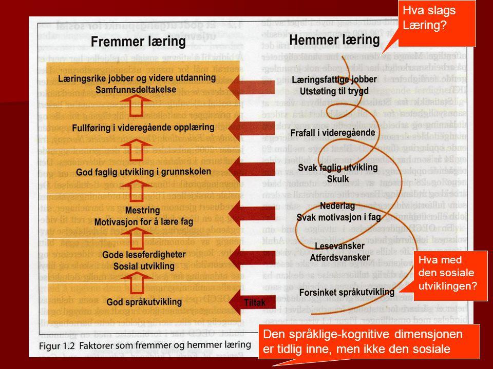 Hva slags Læring. Hva med den sosiale. utviklingen.
