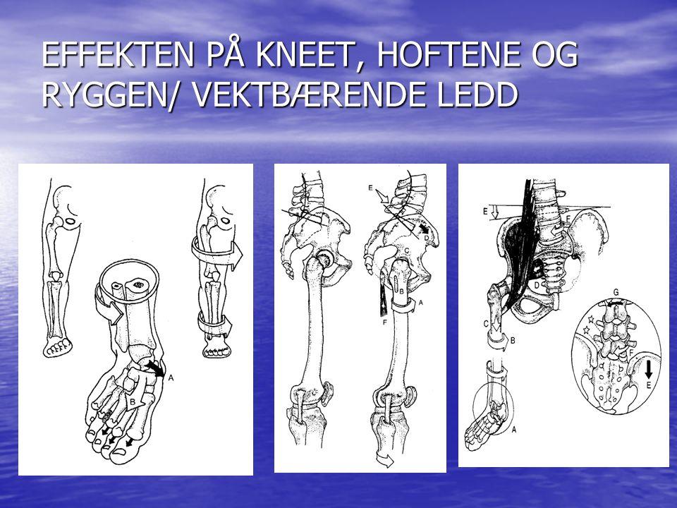 EFFEKTEN PÅ KNEET, HOFTENE OG RYGGEN/ VEKTBÆRENDE LEDD