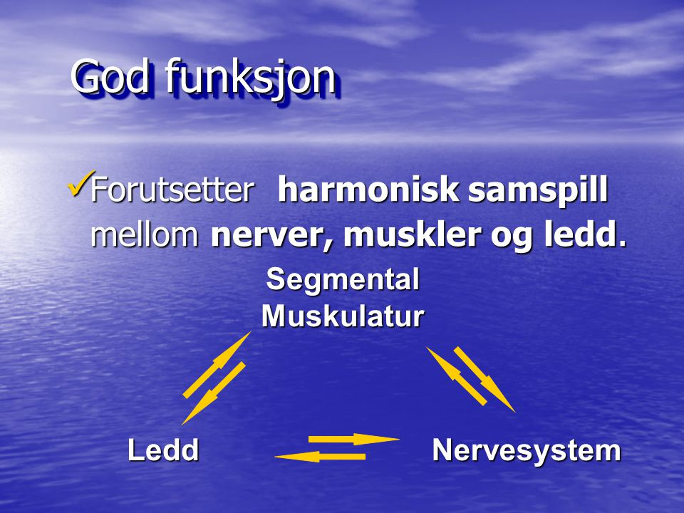 God funksjon Forutsetter harmonisk samspill mellom nerver, muskler og ledd. Segmental Muskulatur.