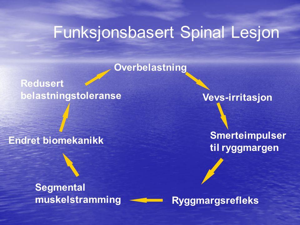 Funksjonsbasert Spinal Lesjon