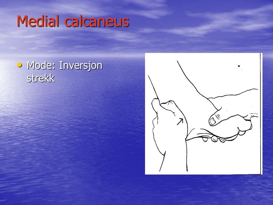 Medial calcaneus Mode: Inversjon strekk