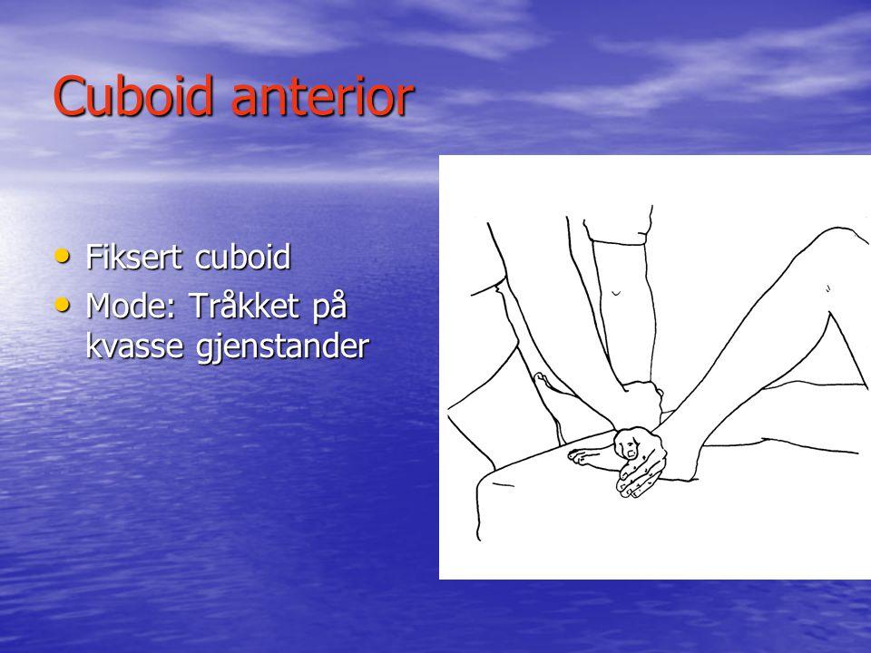 Cuboid anterior Fiksert cuboid Mode: Tråkket på kvasse gjenstander