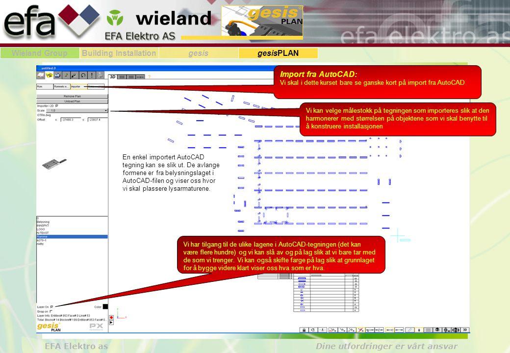 Import fra AutoCAD: Vi skal i dette kurset bare se ganske kort på import fra AutoCAD.