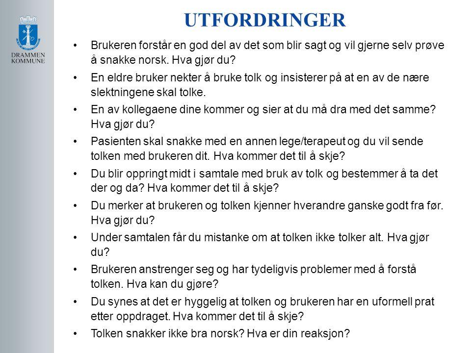 UTFORDRINGER Brukeren forstår en god del av det som blir sagt og vil gjerne selv prøve å snakke norsk. Hva gjør du