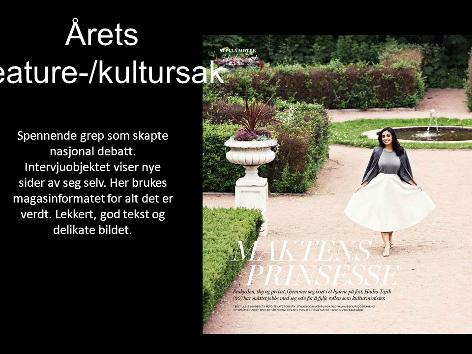 Årets feature-/kultursak