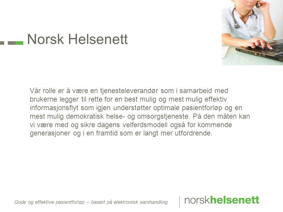 Norsk Helsenett