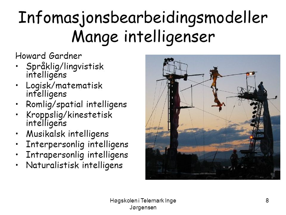 Infomasjonsbearbeidingsmodeller Mange intelligenser