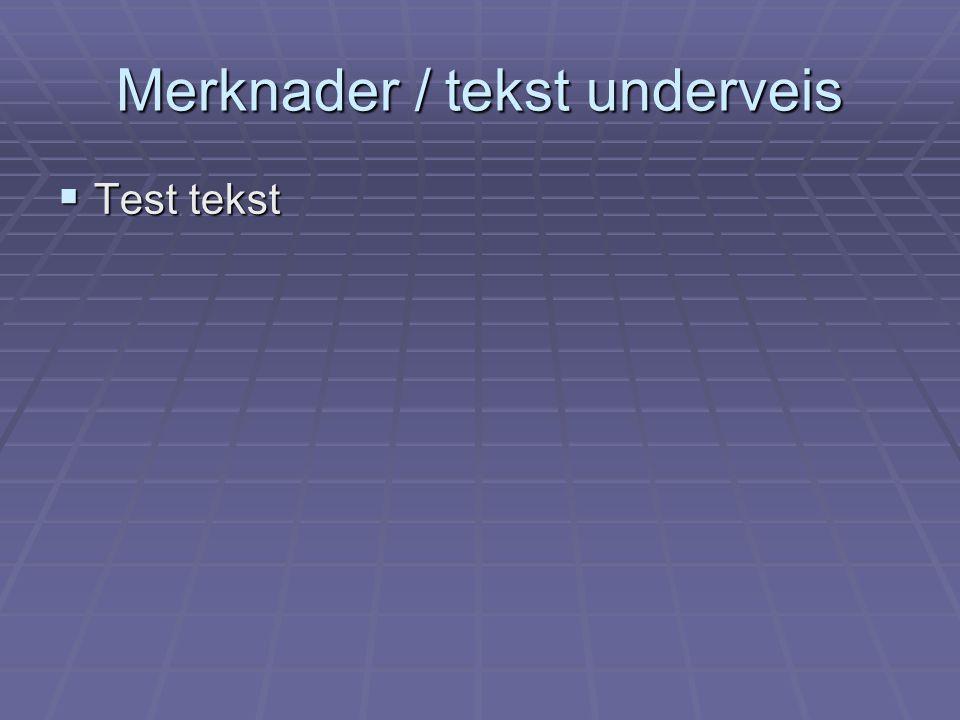 Merknader / tekst underveis