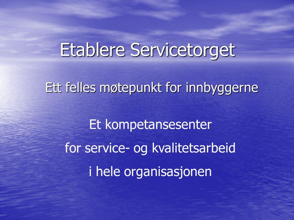 Etablere Servicetorget