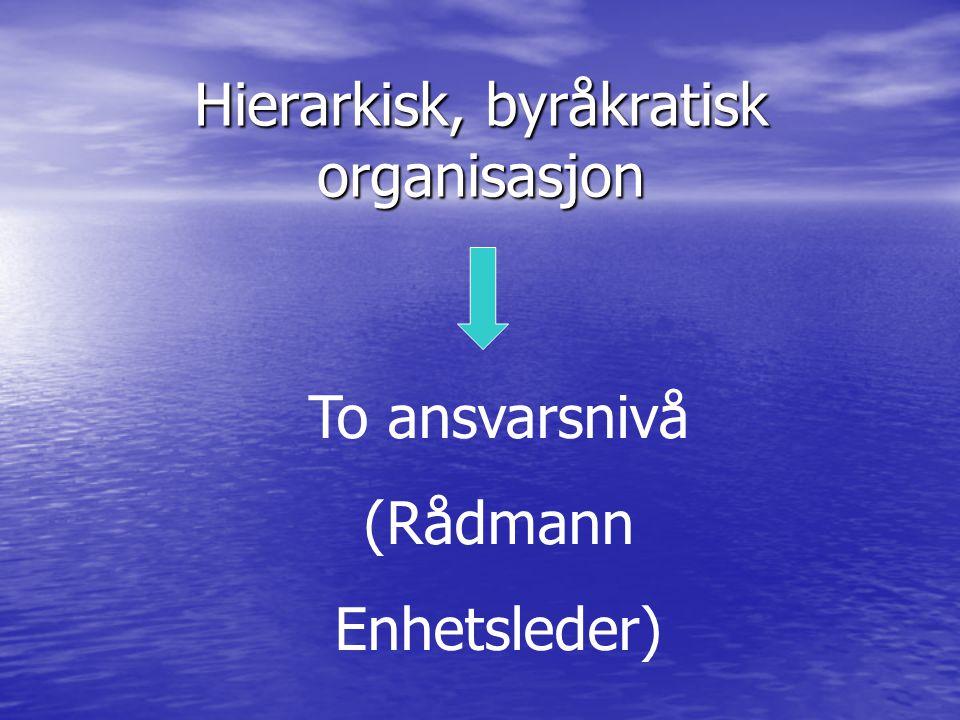 Hierarkisk, byråkratisk organisasjon