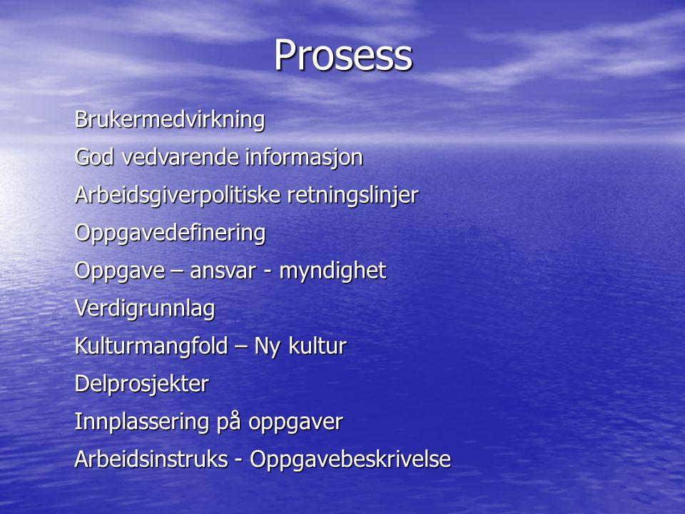 Prosess Brukermedvirkning God vedvarende informasjon